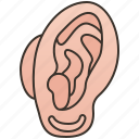 audible, ear, hearing, human, sound icon