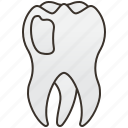 dentist, healthcare, molar, mouth, tooth