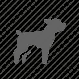 animal, dog, gun, help, hound, hunting, pets icon