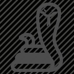 cobra, poison, snake, viper icon