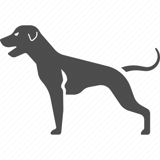dog, hound, hunting, pet icon
