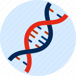 constructed, dna spiral, genetic, laboratory, science icon