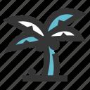 coconut, holiday, plant, travel, tree, vacation