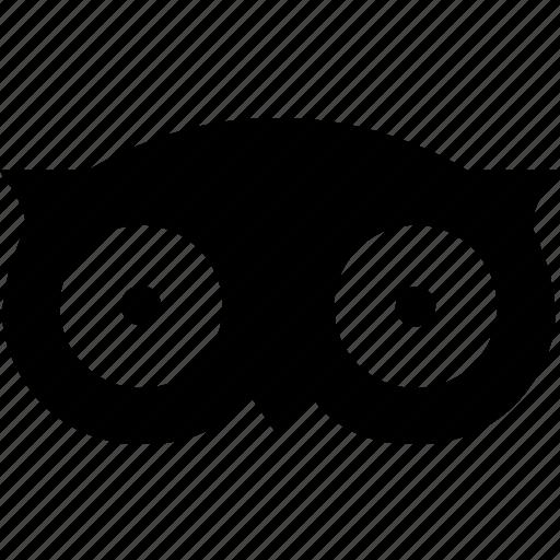 network, recommendations, social, trip, tripadviser icon