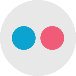 connection, flickr, internet, logo, network, social, social media icon