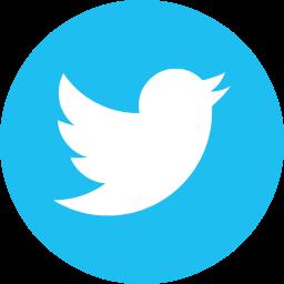 bird, logo, social, social media, tweet, twitter icon