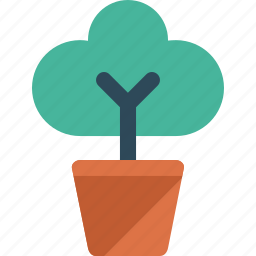 flower, nature, plant, potted icon