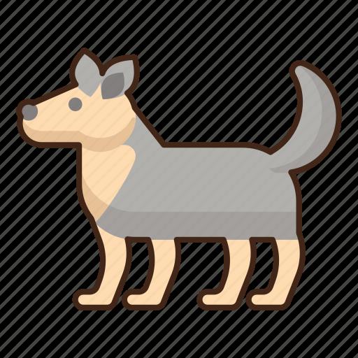 Arctic, dog, animal, pet icon - Download on Iconfinder