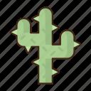 cactus, cacti, plant