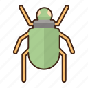 scarab, bug, insect icon