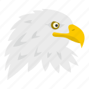 aggression, american, animal, beak, bird, culture, eagle icon