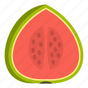 big, dessert, diet, food, fresh, seed, watermelon icon