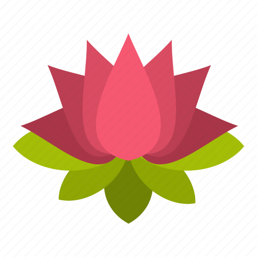 asia, beautiful, beauty, bloom, blooming, blossom, lotus icon