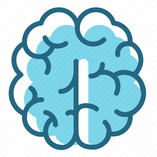 brain, intellect, mind, organ icon