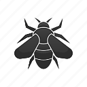 bee, bug, insect, nature