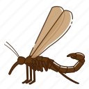 bug, insect, mecoptera icon