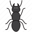 ant, insect, bug, nature, animal, plant, environment