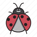 ladybug, insect, bug, nature, garden, animal, red