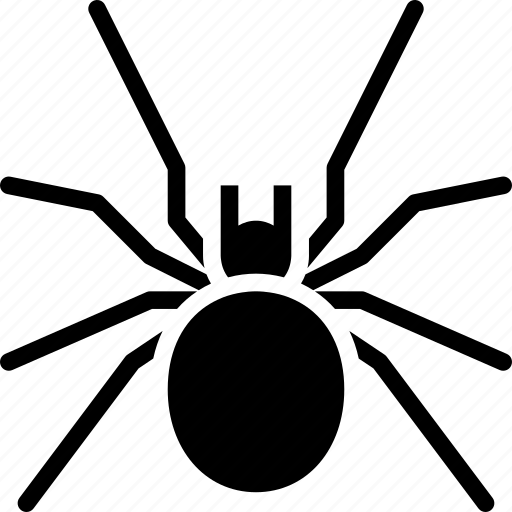 black widow, bug, dangerous, pest, spider, venomous icon
