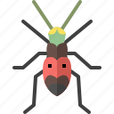 animal, bug, garden, insect, nature, spring, tiger beetle