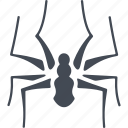 feet, insect, insects, spider icon