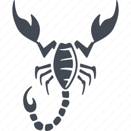 insect, insects, nature, scorpio icon