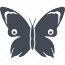 butterfly, ecology, insect, insects, nature icon