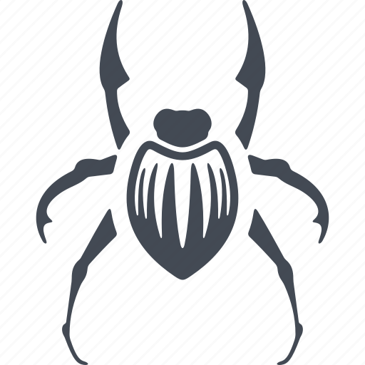 beetle, insect, insects icon