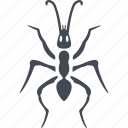 ant, foot, insect, insects icon