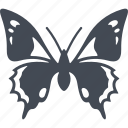 butterfly, insect, insects, nature icon
