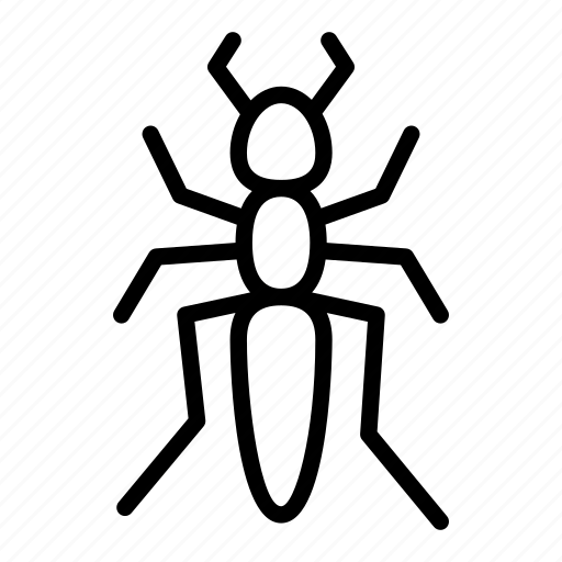 Ant, bug, colony, insect, insects, termite icon - Download on Iconfinder