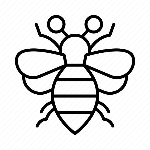 Bee, bug, bugs, environment, insect, insects, nature icon - Download on Iconfinder