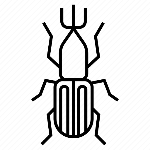 bug, insect, weevils icon