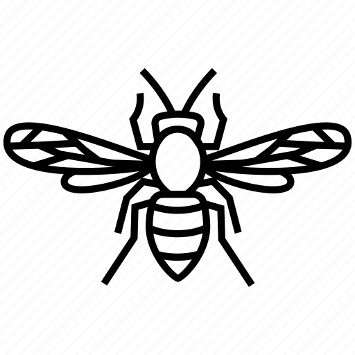 Bee, hornet, insects, wasp icon - Download on Iconfinder