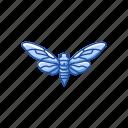 animal, bug, cicada, flying bug, insect, invertebrates icon
