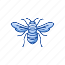 animal, bee, beeswax, flying insect, insect, invertebrate, wasp icon