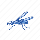 animal, bee, beeswax, flying creature, insect, invertebrates, wasp icon