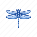 animal, damselfly, dragon fly, emerald damselfly, insect, nymph icon