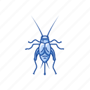 animal, cricket, grasshopper, insect, pest, tree cricket icon
