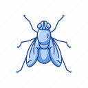 animal, bloodsucker, housefly, insect, invertebrate, pest icon