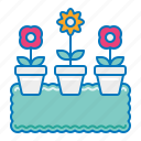 flowers, garden, gardening, pot icon