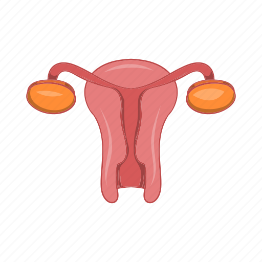 anatomy, cartoon, female, organ, sexual, sign, uterus icon