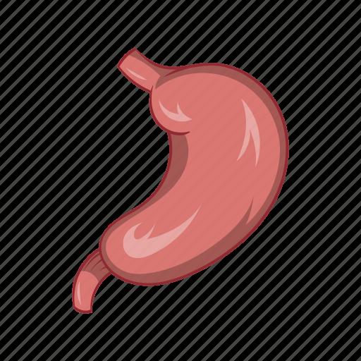 anatomy, cartoon, health, medicine, organ, sign, stomach icon
