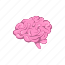 anatomy, brain, cartoon, human, mind, sign, think icon