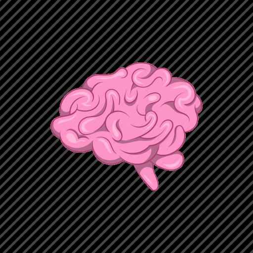anatomy, brain, cartoon, human, mind, sign, think icon