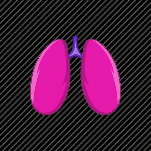 anatomy, cartoon, human, lungs, medical, organ, sign icon