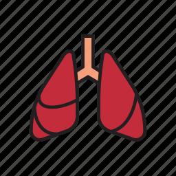 body, breath, breathe, human, internal organs, lungs, organs icon