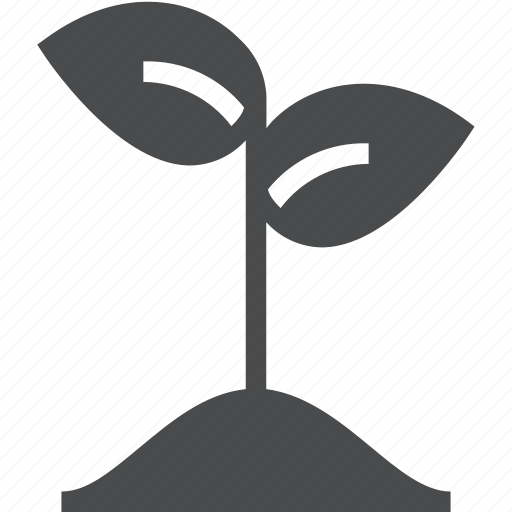 grow, growing, growth, nature, plant, sprout, startup icon