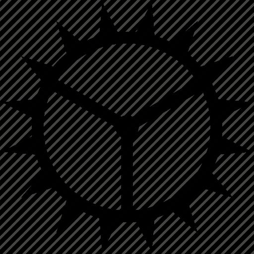 editor, gear, setting icon