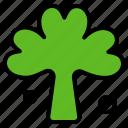 clover, green, ireland, irish, plant